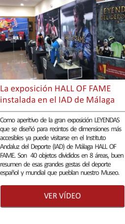 La exposición HALL OF FAME instalada en el IAD de Málaga